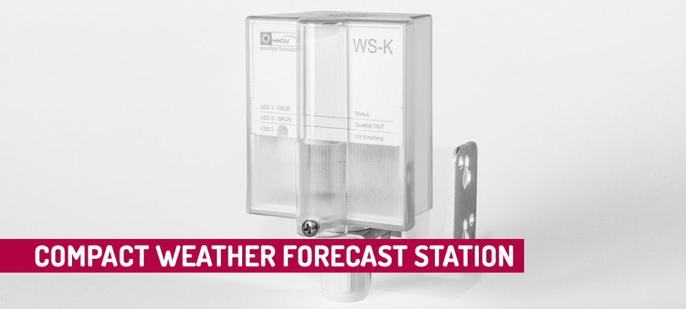 Compact Weather Forecast Station